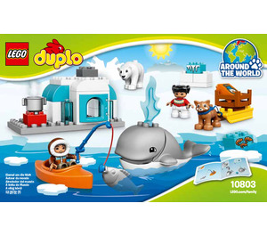 LEGO Arctic Set 10803 Instructions