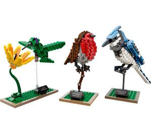 LEGO Birds Set 21301