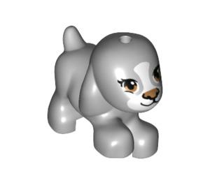 LEGO Dog Walking (19671)