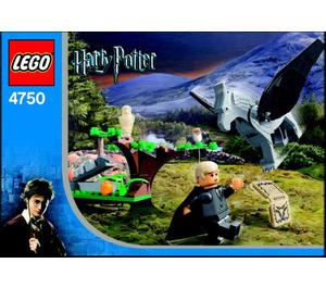 LEGO Draco's Encounter with Buckbeak Set 4750 Instructions