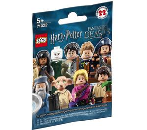 LEGO Harry Potter and Fantastic Beasts Series 1 - Random bag Set 71022-0