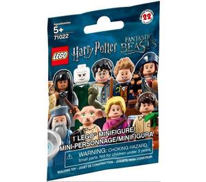 LEGO Harry Potter and Fantastic Beasts Series 1 - Random bag Set 71022-0 Packaging