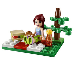 LEGO Summer Picnic Set 30108