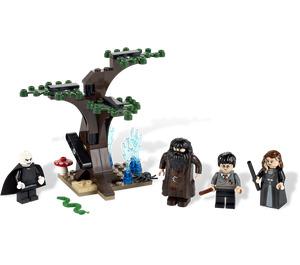 LEGO The Forbidden Forest Set 4865