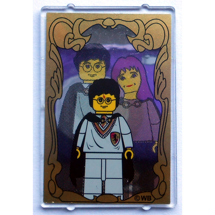 Lego Glass For Window 1 X 4 X 5 With Harry Potter Mirror