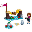 LEGO Adventure Camp Bridge Set 30398