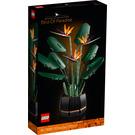 LEGO Bird of Paradise Set 10289 Packaging