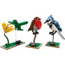 LEGO Birds Set 21301