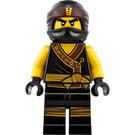 LEGO Cole Minifigure
