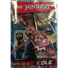 LEGO Cole Set 891839