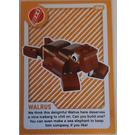 LEGO Create The World Living Amazingly 094 Walrus