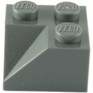 LEGO Dark Stone Gray Slope 45° 2 x 2 with Double Concave (Rough Surface) (3046)