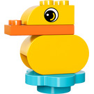 LEGO Duck Set 30321