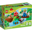 LEGO Ducks Set 10581 Packaging
