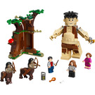 LEGO Forbidden Forest: Umbridge's Encounter Set 75967