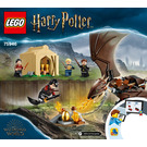 LEGO Hungarian Horntail Triwizard Challenge Set 75946 Instructions
