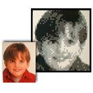 LEGO Mosaic Set 3443