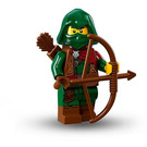 LEGO Rogue Set 71013-11