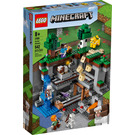 LEGO The First Adventure Set 21169 Packaging