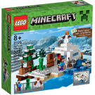 LEGO The Snow Hideout Set 21120 Packaging