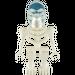 LEGO Akator Skeleton Minifigure
