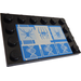 LEGO Tile 4 x 6 with Edge Studs with 3 Spiders and DNA Sticker (6180)