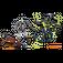 LEGO Titan Mech Battle Set 70737